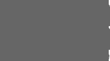 Difesa-Donna-Logo-Gray