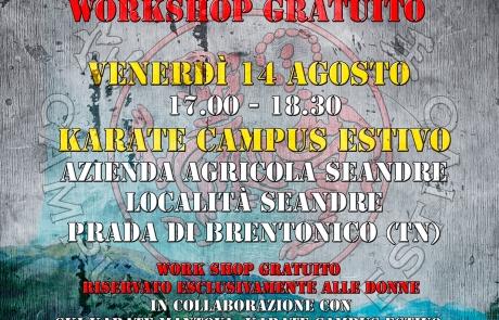 Workshop Gratuito a Seandre (TN)