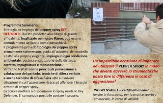 seminario-pepper-2016-4dic-1